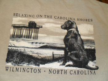 Relaxing on the Carolina Shore